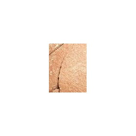 Makeup Revolution London Re-loaded Bronzer 15g Take A Vacation